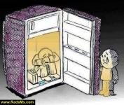 social cartoon_19